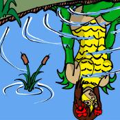 Dark Water thumbnail